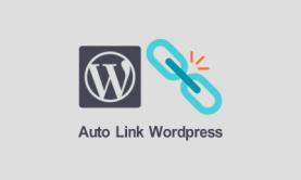لینک دار کردن خودکار کلمات در متن نوشته وردپرس با افزونه و کد
