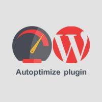 افزایش سرعت وردپرس توسط افزونه Autoptimize با بهینه سازی قالب وردپرس