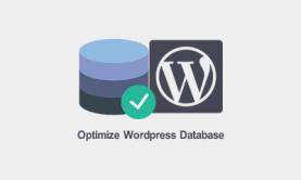 بهینه سازی دیتابیس وردپرس با افزونه کاهش حجم پایگاه داده سایت