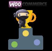 کد نمایش محصولات پرفروش ووکامرس به شرط موجود در انبار