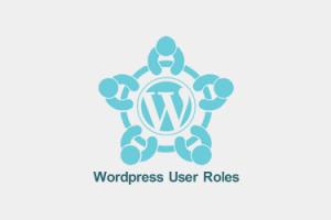 مدیریت دسترسی کاربران وردپرس با تعریف نقش کاربری WordPress User Role