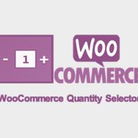 شخصی سازی دکمه تعداد محصول ووکامرس WooCommerce Quantity