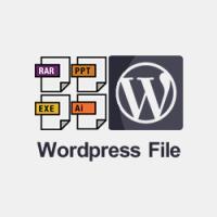 آپلود فایل در وردپرس و رفع خطای این نوع پرونده به دلایل امنیتی مجاز نیست