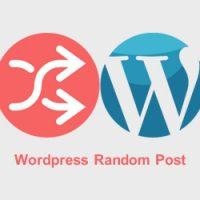 افزونه و کد مطالب تصادفی وردپرس با عکس شاخص و استایل زیبا Random Posts
